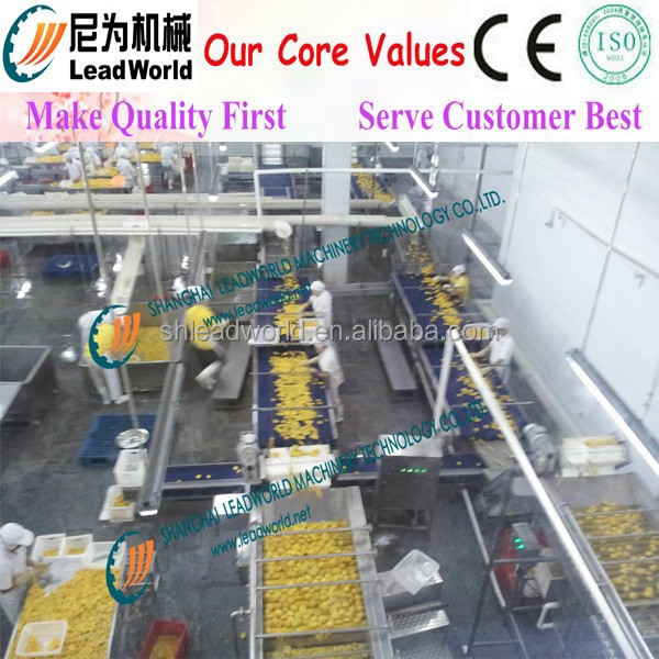 High productive Apple Processing Line
