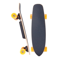 SYL-03 fish board electric skateboard cheap price four wheel electric skateboard
