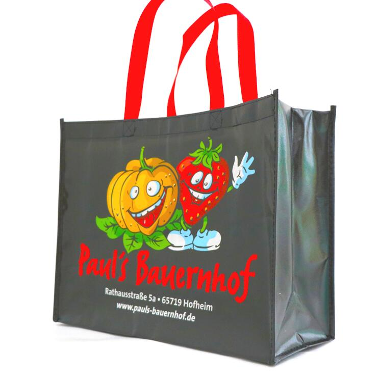 Promotional <strong>Eco</strong> Friendly advertise Logo Shopping Print Non woven Bag