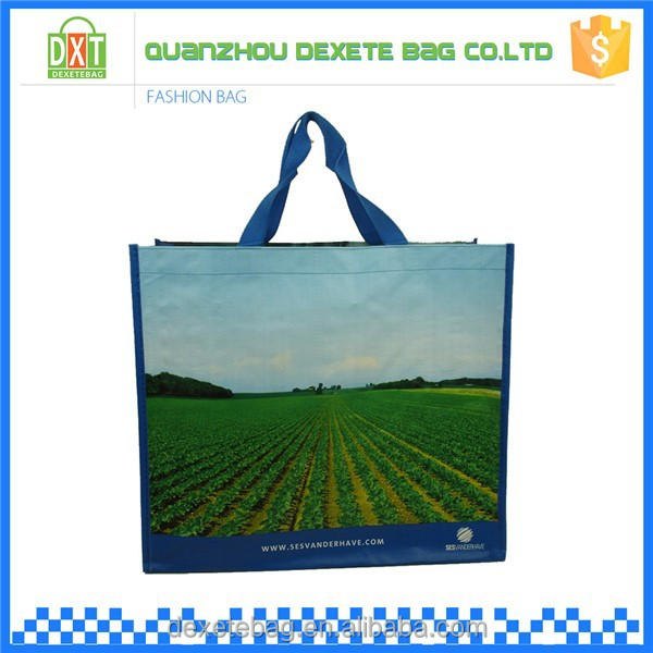 Promotional cheap custom pp woven shopping tote bags