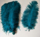 Wholesale Teal Blue dyed color 60-65cm Ostrich Feathers