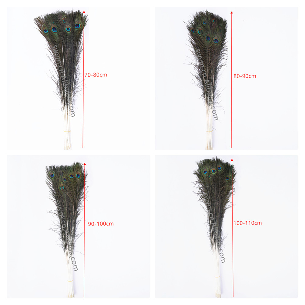 25-120cm Wholesale Natural Peacock Feathers Indian Peacock Feather