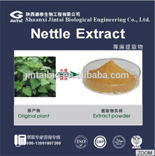 Water Soluble 100% nature Nettle Extract