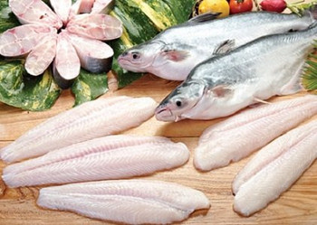 Frozen pangasius fish basa fish fillet round whole for What is pangasius fish