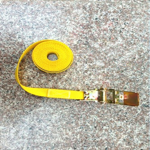 1 inch small Plastic Ratchet Tie Down Straps Stainless for Container Cargo Protection