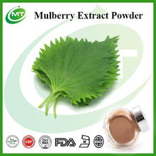 4:1 Mulberry Extract Powder