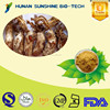 2015 Hot product anti-fatigue product Cordyceps sobolifera extract powder 10%-50% Polysaccharides