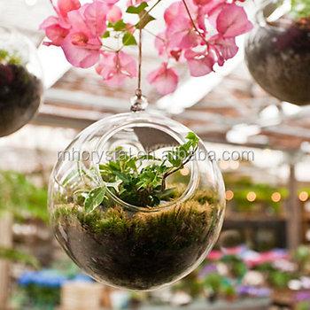 Bubble Hanging Glass Orb Plants Terrarium Mh 12290 Buy Glass