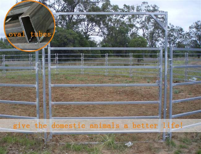 40 60g Zinc Farm Equipment Metal Horse Fence Panel 12 6 Ft