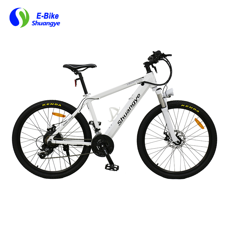 electric mountain bike 2