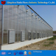 Low cost China factory Hydroponic System plastic tomato greenhouse