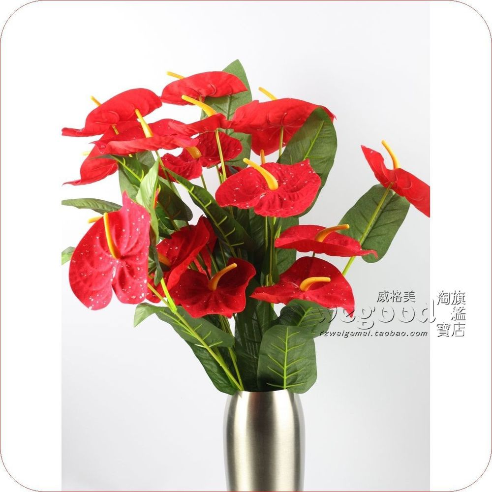 Cheap Send Single Flower Find Send Single Flower Deals On Line At