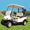 3.7KW 2 seater prices electric golf car
