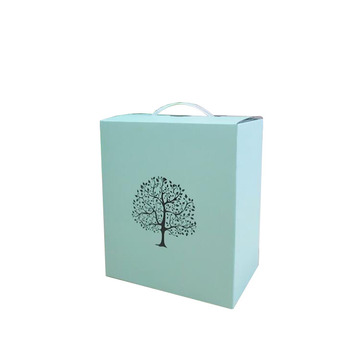 Eco-friendly E flute paper box, corrugated carton box with plastic handle