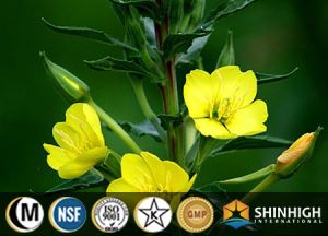 Evening Primrose Seed Oil EPO Softgel