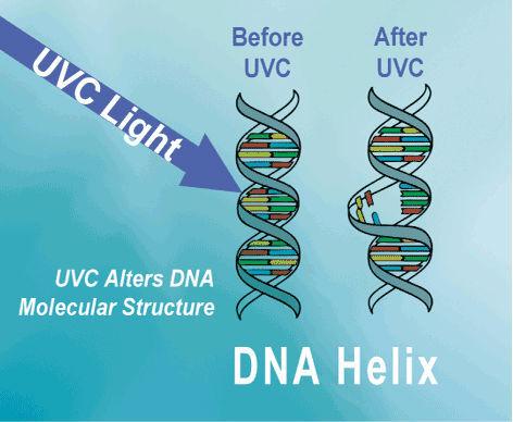 China High Quality Pvc Uv Sterilization System For Salt