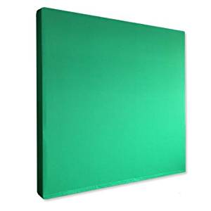 PREMIUM 8x8 GREEN SCREEN SETUP FOR PROFESSIONALS, Wrinkle Free Green Screen Backdrop, Best Green Screen Pop Up for Clean & Easy Set Up!