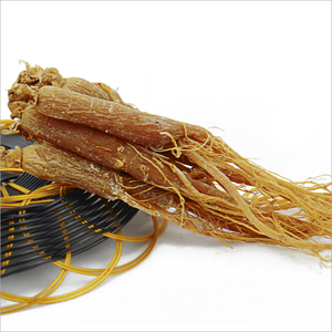 hot sales Chinese red ginseng natural herb remedies