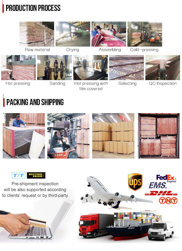 TECON Hot Sale Film Faced Ply Wood Plywood For construction Building materials