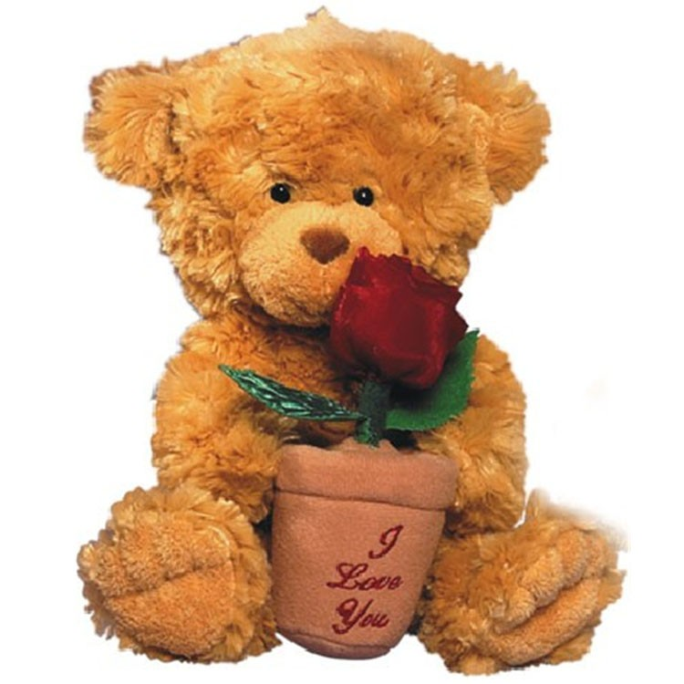 Dating Teddy Bears