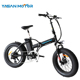 beach cruiser 500W/1000W motor 48V11AH LG lithium battery Folding fat tire electric bike