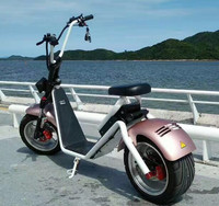 2017 hot selling cheap price citycoco 1000w harley electric scooter