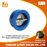 high quality 4 inch ductile iron vertical horizontal check valve