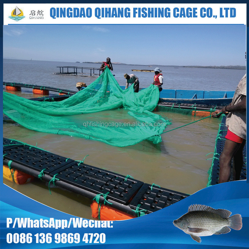 Qihang Floating Sea Cucumber and Abalone Cage Net
