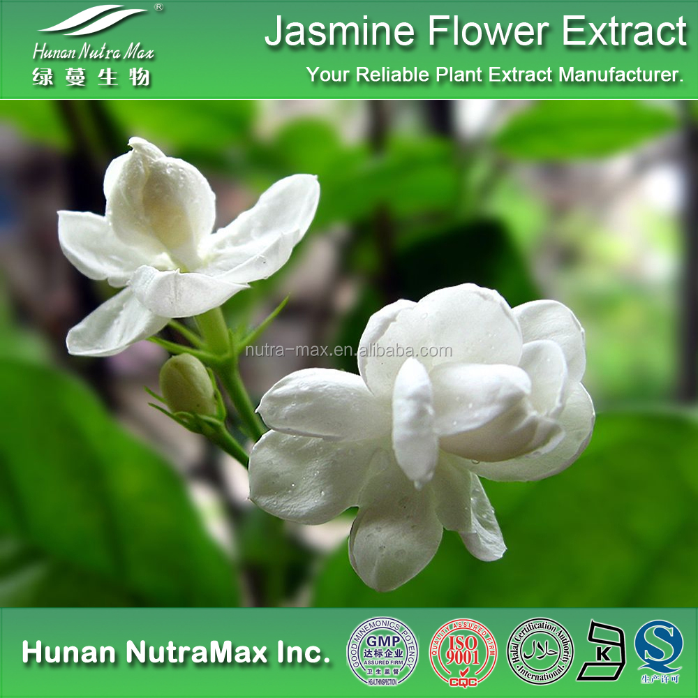 Instant jasmine tea extract instant jasmine tea extract suppliers instant jasmine tea extract instant jasmine tea extract suppliers and manufacturers at alibaba izmirmasajfo