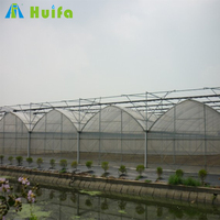 Solar Commercial Hydroponics Greenhouse for Agriculture