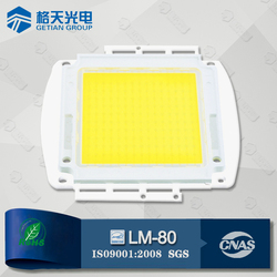 LM-80 ROHS Alibaba Website High Lumen Outdoor Lights 300W High Power COB LED Module Epistar Chip CRI80 6000-6500K 30000-33000LM