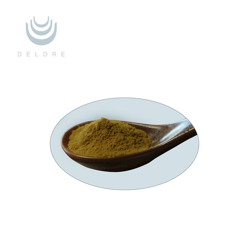 Herbal Cimicifuga Racemosa Root / Black Cohosh Extract Triterpenoid  Saponins - Buy Herbal Cimicifuga Racemosa Root Extract,Gmp Factory Supplies  Black
