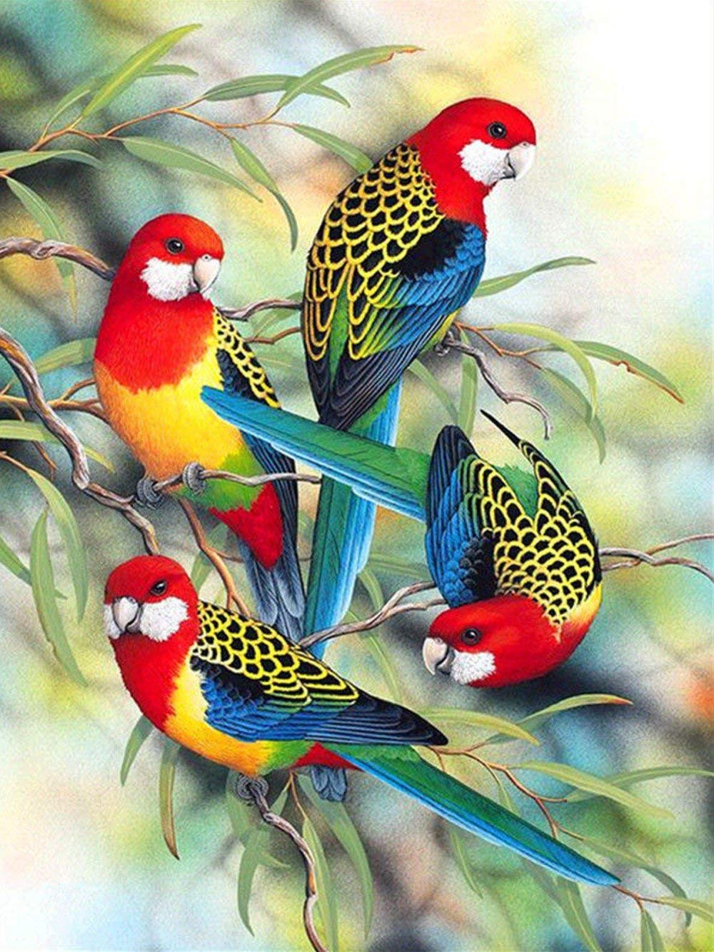 TianMai Hot New DIY 5D Diamond Painting Kits Diamond Embroidery Painting Pasted Paint By Number Kit Stitch Craft Kit Home Decor Wall Sticker - Bird, 30x38cm