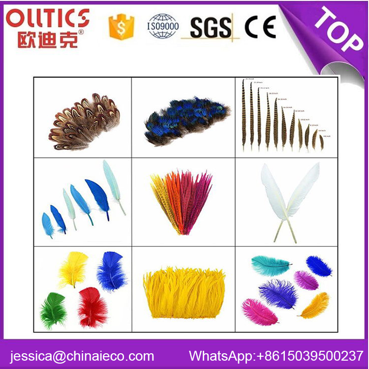 Wholesale carnival costumes colorful big ostrich feather hand fans for lady