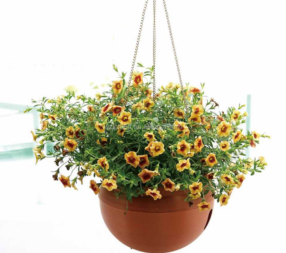 Cheap Hanging Baskets With Flowers : Plastic hanging baskets wholesale flower pots