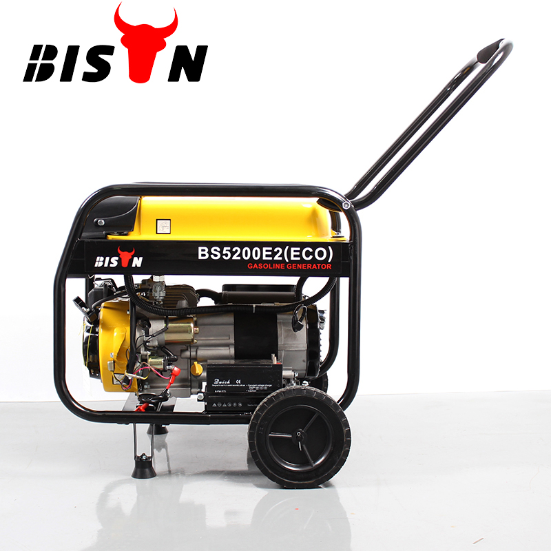 BISON(CHINA) New Popular BS3000E 2500w 2.5kw Ohv Structure Portable Air-cooled Gasoline Generator 2500 Set