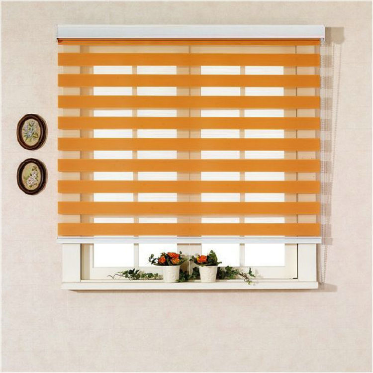 Guangzhou one way window mechanical sheer zebra blinds