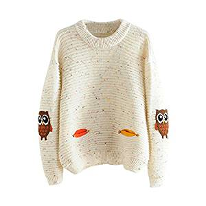 Womens Pullovers - SODIAL(R)Womens Fashion O-Neck Owl Character With Pocket Hit Color Loose Sweater Pullovers (beige,One Size)
