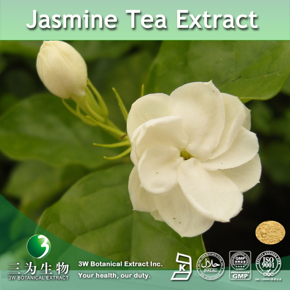 China jasmine tea extract wholesale alibaba izmirmasajfo