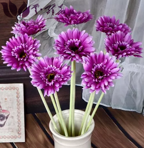 Cheap Price Wholesale Fresh Cut Flowers Gerbera Plants