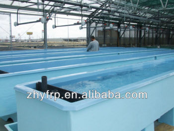 Frp fish tank for indoor fish farm fiberglass fish tanks for Vasche per allevamento ittico