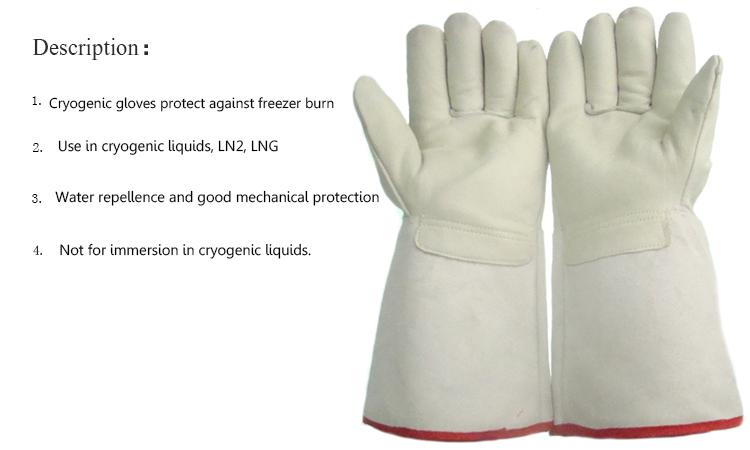 How Should Food Handling Gloves Be Stored