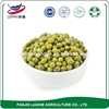 Hot Selling Size 3.2-4.0mm AD Drying Process and Urad Beans Chinese Mung Bean/Vigna Beans