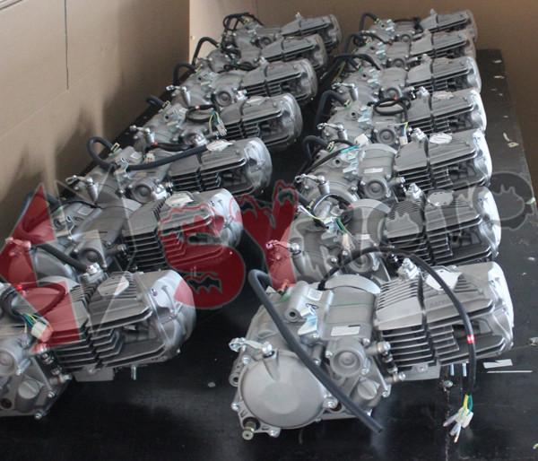 Daytona 190 150cc Anima 4 Valve Flx Fdx Engine Buy
