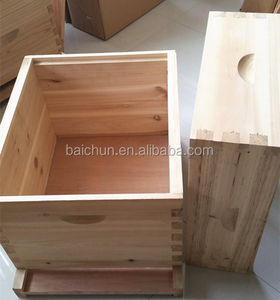bee keeping 2 layers dadant beehive/beehive dadant from China best beehive manufacturers