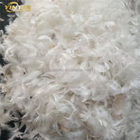 2-4cm Small Washed White Duck/Goose Down Feather
