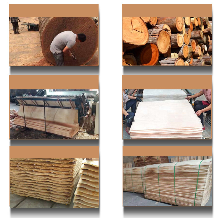 0.3 mm Okoume Wood Veneer Rotary Cut A Grade