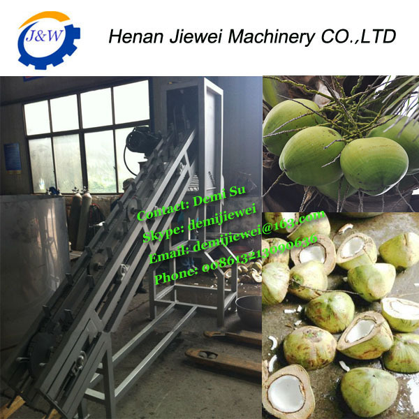 half of coconut cut coconut source quality cut coconut from global cut coconut