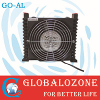 Ozone Generator Spare Parts Oil Free Air Compressor Pump - Buy Oil ...