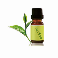 OEM Small Bottle Packed Tea Tree Oil Private Label for Keloids Uses